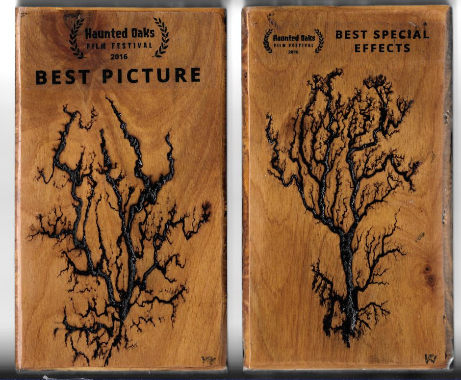 """The Catalyst"" won Best Picture and Best Special Effects at the Haunted Oaks Film Festival, Pittsburgh"